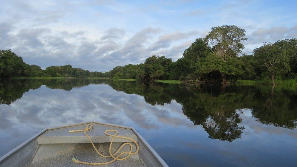 rio, guaporé, amazon-1841419.jpg